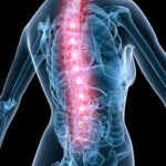 Common Chiropractor Exercises to Relieve Back Pain