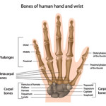 How to Treat A Hand Injury