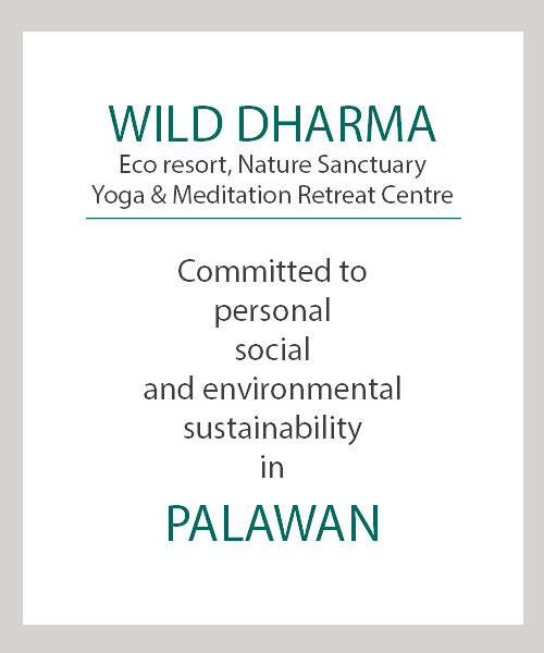 wild dharma