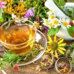 Herbal Medicines Remedies and Proven Benefits to Mankind
