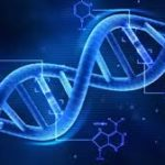 Go for DNA test for exact references relating to biological relationships