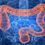 Revealing The Best Colon Cleanse Secrets For Healthier Body