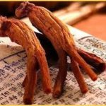 Health Benefits of Red Ginseng Natural Supplements