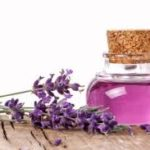 Lavender Oil: Blended By Nature To Provide You Best Benefits