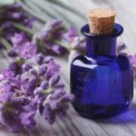 Consider Procuring The Best Lavender Essential Oil From Reputed Stores